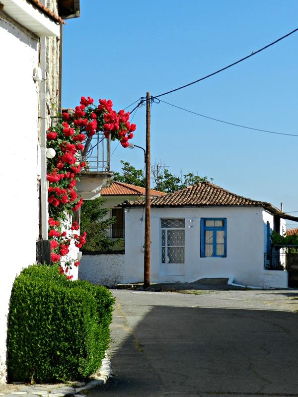 Tegea Dorf