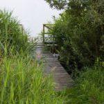Freitagsfotos: Ostsee-Urlaub Teil 1