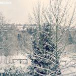 Schwäbisches Schneewochenende Teil 1