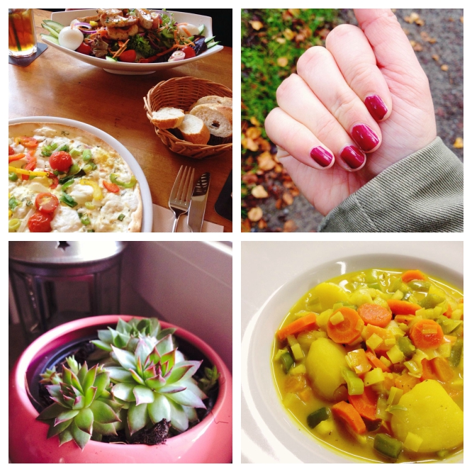 monthly highlights september and october: food, beauty and succulent bits
